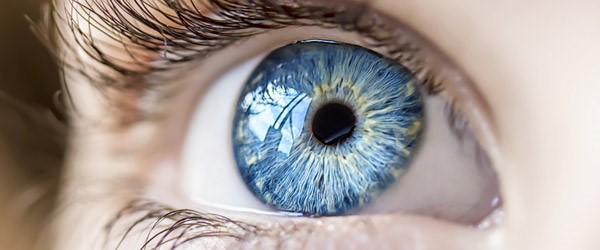 5 common biometric techniques compared